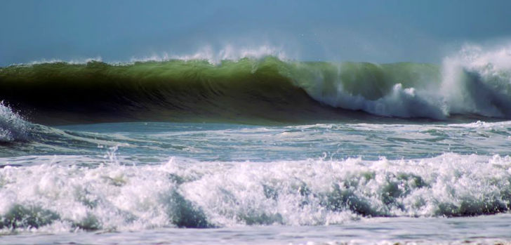 Surfers swell