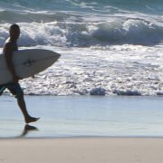 A surfer walks along Palm Beach on the Gold Coast