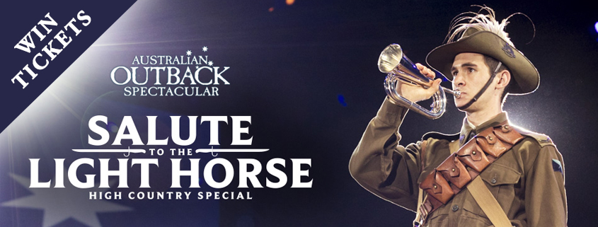 Salute To The Light Horse
