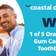 Coastal Dental Care Toothbrushes